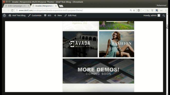 Как отправить из envato в WordPress